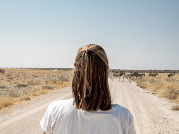 Okonjima & Etosha National Park